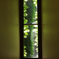 Window at Gerstein Library