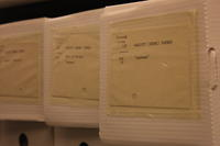 Manuscript Collection