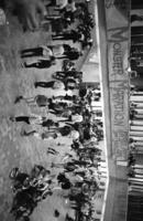 Scarborough College - Scarborough Fair