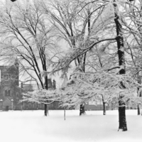 University College in the winter