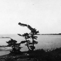 View of Split Rock Bay from Starr Island at Go Home Bay