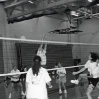 Erindale College (UTM), volleyball game