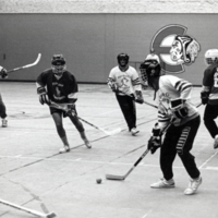 Erindale College (UTM), floor hockey game