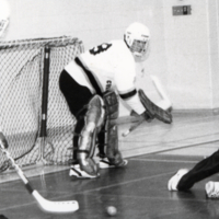 Erindale College (UTM), floor hockey