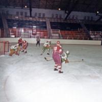 Erindale College (UTM), Men's Hockey game
