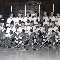 Erindale College (UTM), Men's Hockey Team Picture