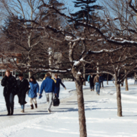 UTM, people walking to and from class in snow