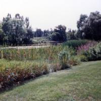 UTM, pond