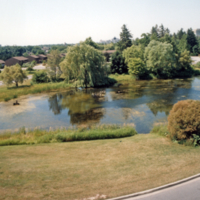 UTM, pond, view from hill