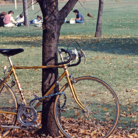 UTM, bicycle and students