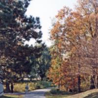 UTM, pathway