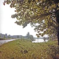 UTM, campus view