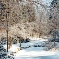 UTM, pond, winter scene