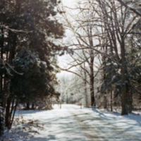 UTM campus, snow covered pathway